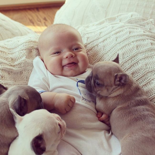 These Are The 19 Cutest Pictures Of Babies And Puppies Frankies Facts